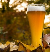 fall-seasonal-beer-380x400